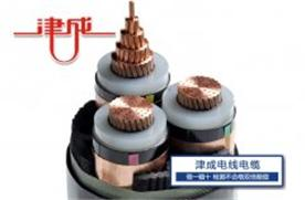 西安津成电线电缆有限公司Logo