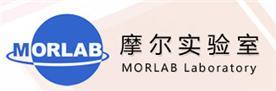 深圳市摩尔环宇通信技术有限公司Logo