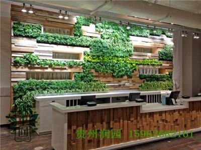 贵阳植物壁画设计公司在毕节和遵义均设有