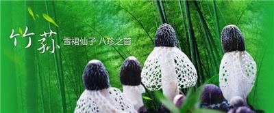 织金竹荪怎么吃