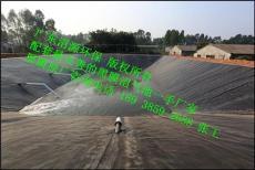 廣東沼氣池 黑膜沼氣工程公司 工期短價格低