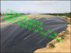 廣西沼氣池 黑膜沼氣工程 最新技術工價格低