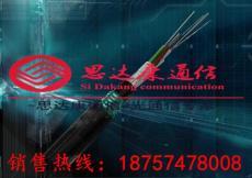 16芯GYFTY非金属防雷光缆