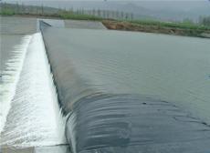 煙臺桑尼橡膠生產橡膠水壩價格合理圖片
