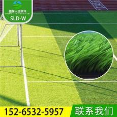 户外运功场 室内足球场人造草坪 人工草坪