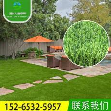 幼儿园专用绿化景观人造草坪地毯 仿真草坪