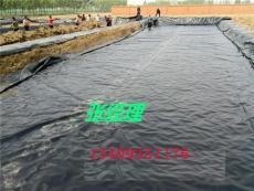 漯河舞陽臨潁淺水蓮藕專用地膜蓮菜塑料薄膜