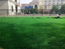 齊齊哈爾人造草坪生產廠家