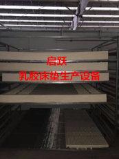 启跃乳胶床垫生产设备QY-1200