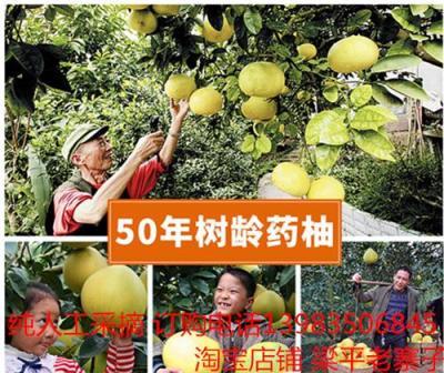 梁平柚子味道 梁平柚子价格 梁平柚子