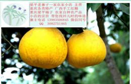 广东人爱吃的柚子 广东人评价的中国名柚