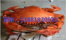 四川成都螃蟹養殖盒 重慶螃蟹盒 塑料盒