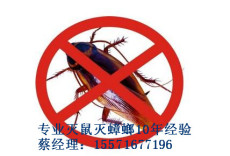 荆州专业灭鼠灭蟑螂效果最好 口碑最优