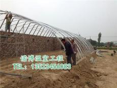 郑州蔬菜大棚温室加工制作价格低的厂家