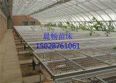 河北温室苗床网片生产厂家