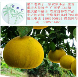 重庆特产梁山柚子 梁平柚子的营养价值