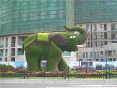 长沙广场立体绿化 湖南广场立体绿化工程