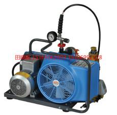 德国宝华BAUER100充气泵 BAUER100填充泵