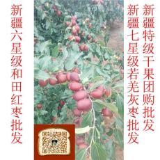 東莞市新疆紅棗哪里的好 和田玉棗生長在非