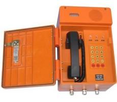 BR-2化工防爆擴音對講話站數字防爆對講電話