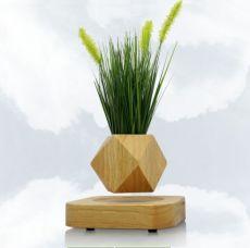 磁懸浮多面體木底座盆栽