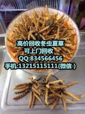东莞东城回收冬虫夏草 东城哪有回收虫草