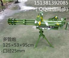 供应山东SY-03多管炮 旅游景点游乐气炮