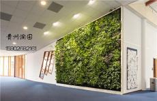 .修文墙面墙体绿化为生态墙的整体效果及