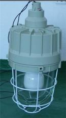 HRD83系列防暴高效节能无极灯 C