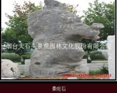 山东景观石 园林太湖石 烟台大石头厂家