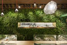 貴陽生態綠化和電視背景墻立體種植