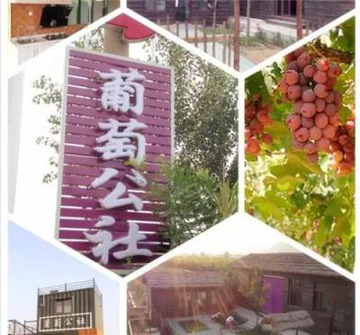 河北唐山草莓采摘