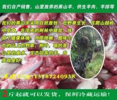 山西晋城泽州县高脚黑山羊肉厂家新鲜羊肉