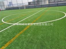 山东济南人造草坪 足球场草坪草坪1平米造价