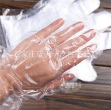 透明度高 质量保证一次性使用薄膜手套厂家