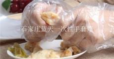 食品级餐厅透明一次性手套
