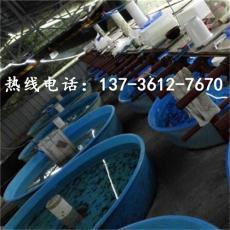500公斤豆芽催芽桶食品級圓桶廠家