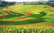 河南農業廢棄物處理工程乙級農林資質如何辦