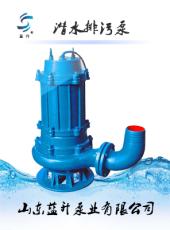 山东济南WQ潜污泵