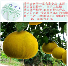浙江温州人保健水果 梁平柚子 100%纯天然