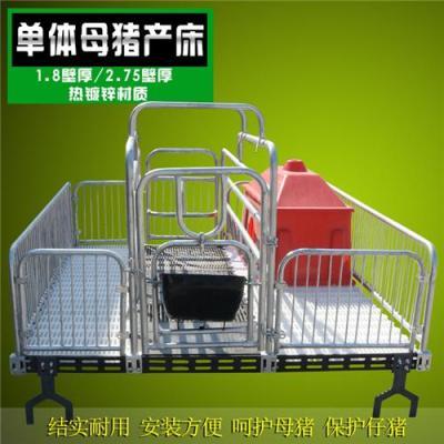 新乡县母猪体虚在母猪产床上不老实母猪产床