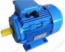 MS100L-2-3KW 三相異步電動機