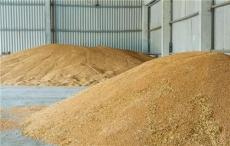 湖南收購大豆小麥實力廠家