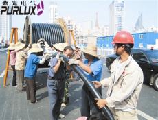 东莞紫光电气专业制造工程报价 来图定制 10
