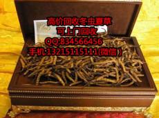 東莞黃江有回收蟲草的嗎 黃江高價回收蟲草