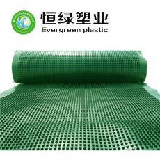 厂家生产塑料排水板 植草格 HDPE排水板