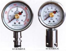 礦用雙針耐震壓力表BZY-50/BZY60
