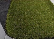 北京哪里有卖人造草坪北京厂家