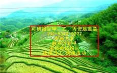 遂平县计划书的公司河南写可研报告