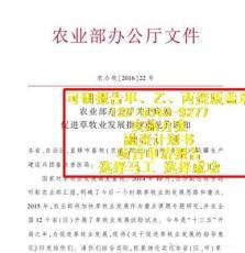 平舆县实施方案河南代写可研集团欢迎代写